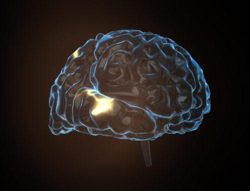 Felicidad y química: neurotransmisores y hormonas para la salud mental
